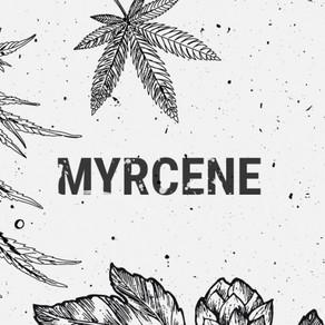 Myrcene and its effects