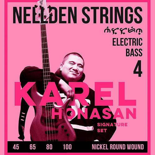 Nellden Strings Karel Honasan Signature 4 String Bass Guitar set