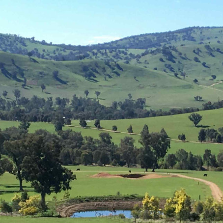 Ten Ways to Improve the Natural Assets on a Farm