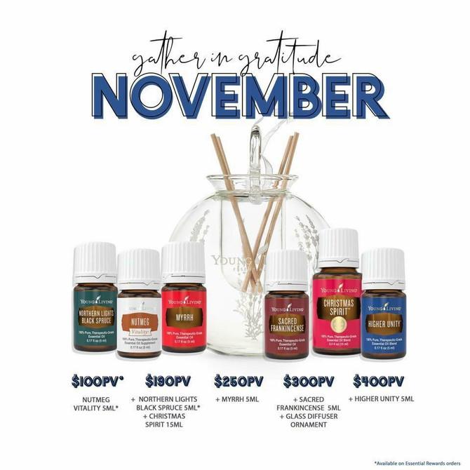 November promo is here!