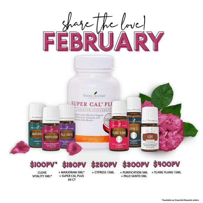february promos are here!