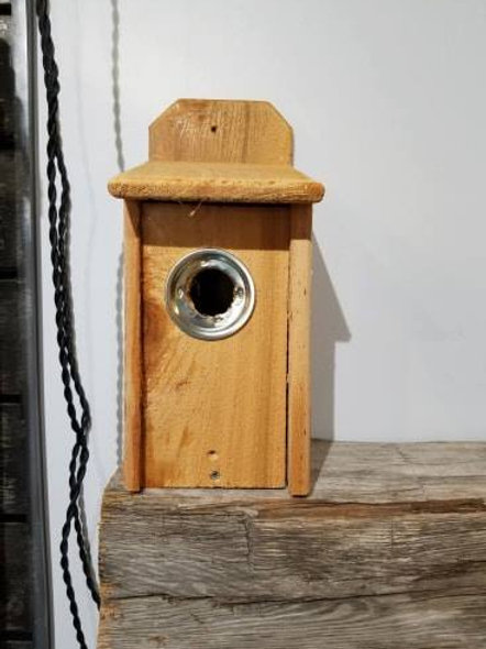 Handmade Cedar Blue Bird Houses Nesting Boxes