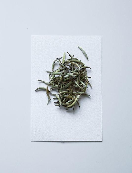Tea22.jpg