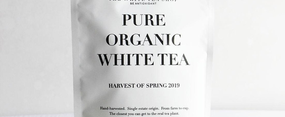 Silver Needles White Tea in 100g Resealable Pouch