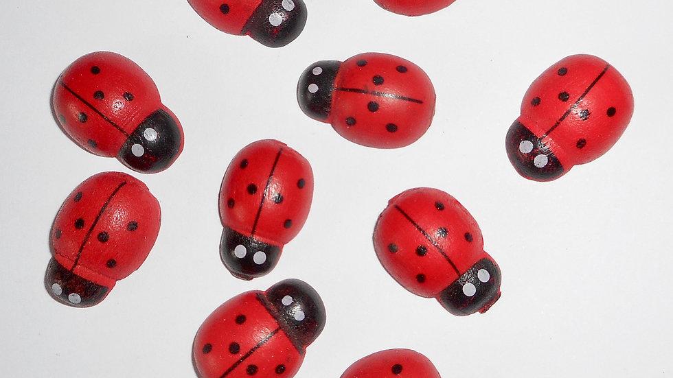 Wooden Ladybirds (10)