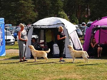 Pipsa_ja_Åsa_nayttelyssa.jpg