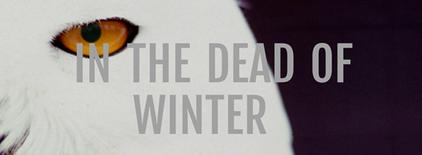 Dead_Of_Winter.png