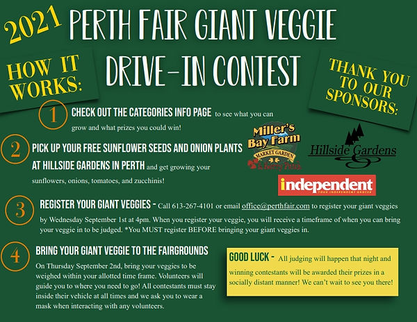 Perth Fair Drive In How it Works Sheet_0