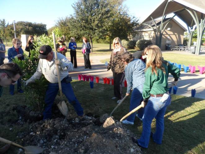 Club members helpingto plant a Mountain Laurel.