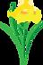 Frisco Garden Club - Yellow Iris.png
