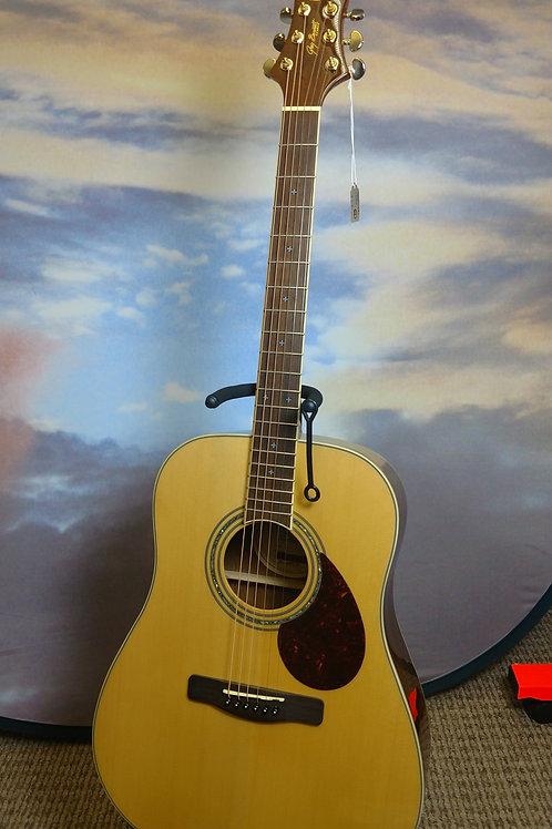 Samich D6 acustic guitar (4)