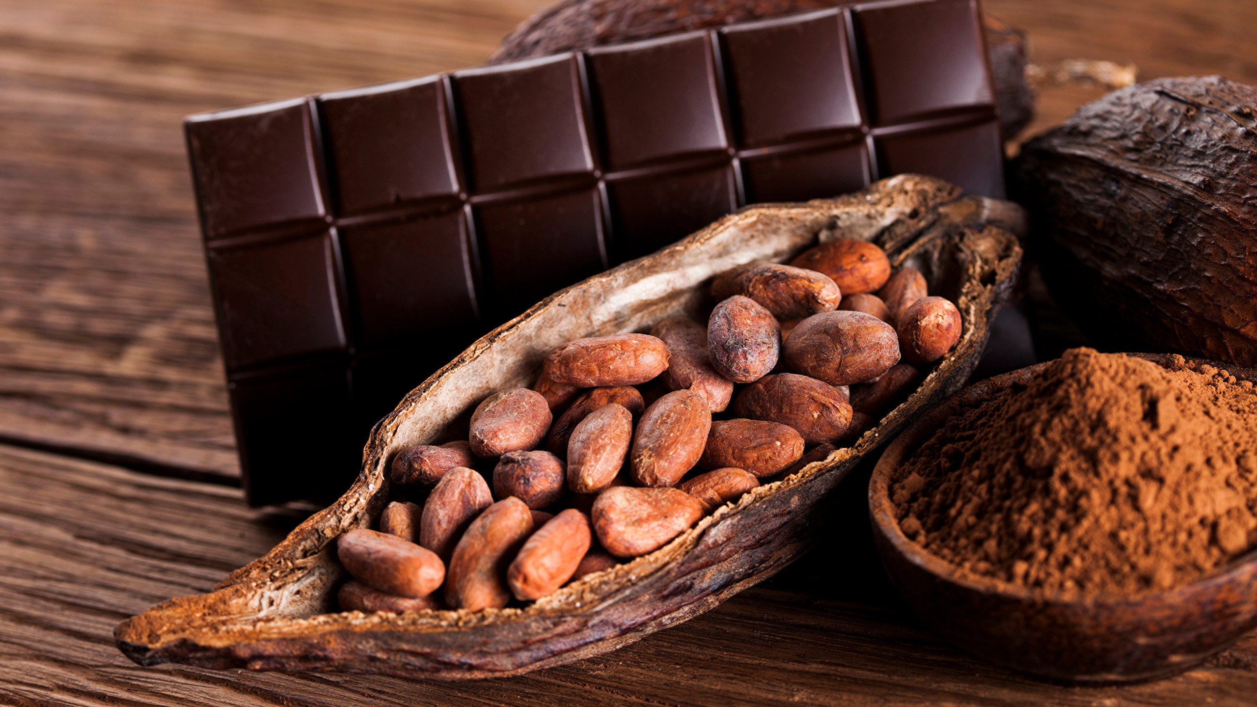 Chocolat de la fève à la tablette