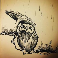 Rainy days#micron