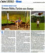 article-LN006.jpg