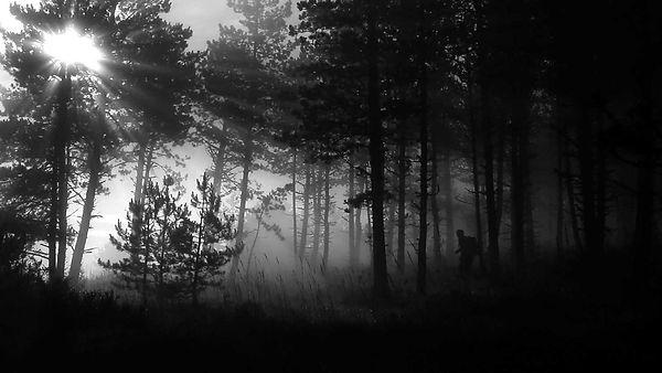 aleas-giratoires-capture-d'ecran-©Erwann