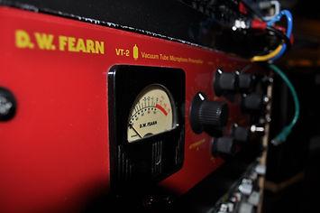 fearn2.JPG