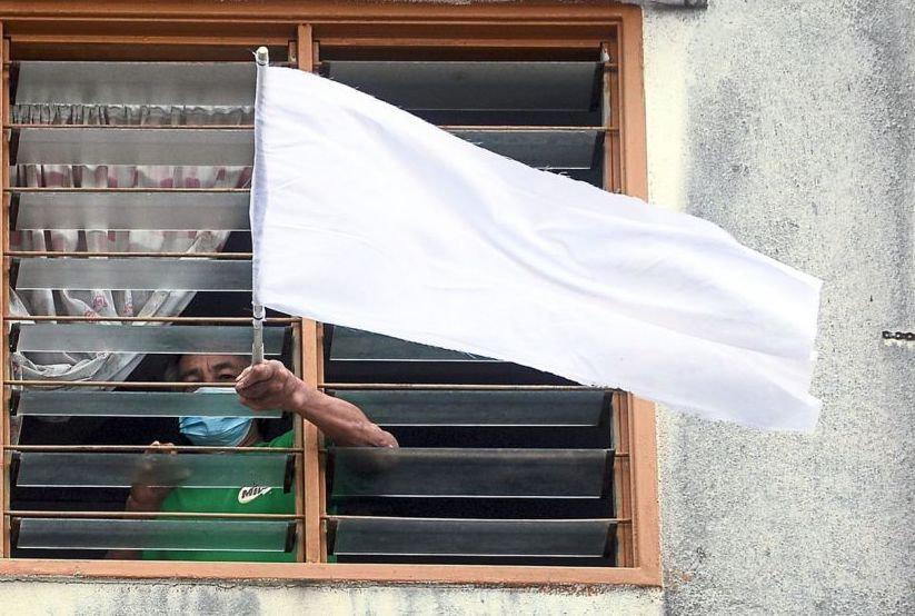 af_whiteflag_3006 copy.jpg