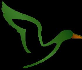 Web Logo icon Small.png