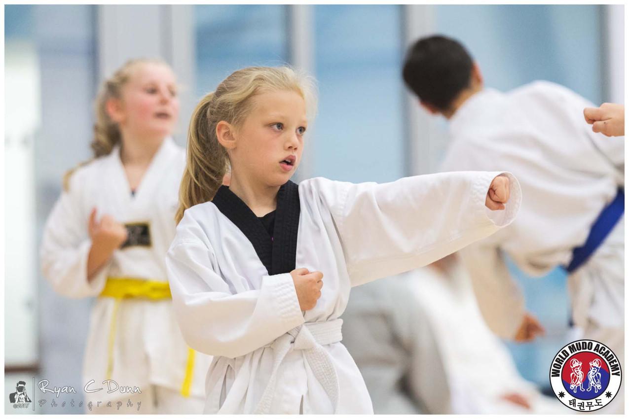 Taekwondo Seminar LR WM-17