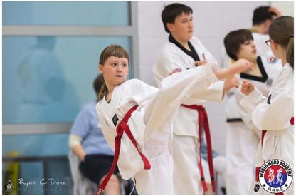 Taekwondo Seminar LR WM-09.jpg