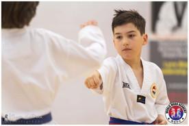 Taekwondo Seminar LR WM-05.jpg