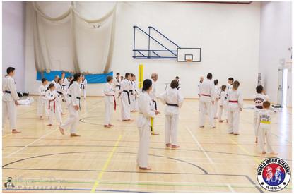 Taekwondo Seminar LR WM-01.jpg