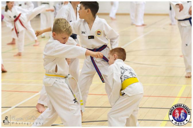 Taekwondo Seminar LR WM-16.jpg