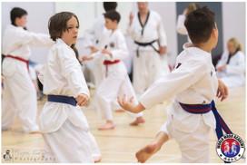 Taekwondo Seminar LR WM-03.jpg