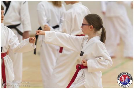 Taekwondo Seminar LR WM-07.jpg