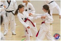 Taekwondo Seminar LR WM-08.jpg