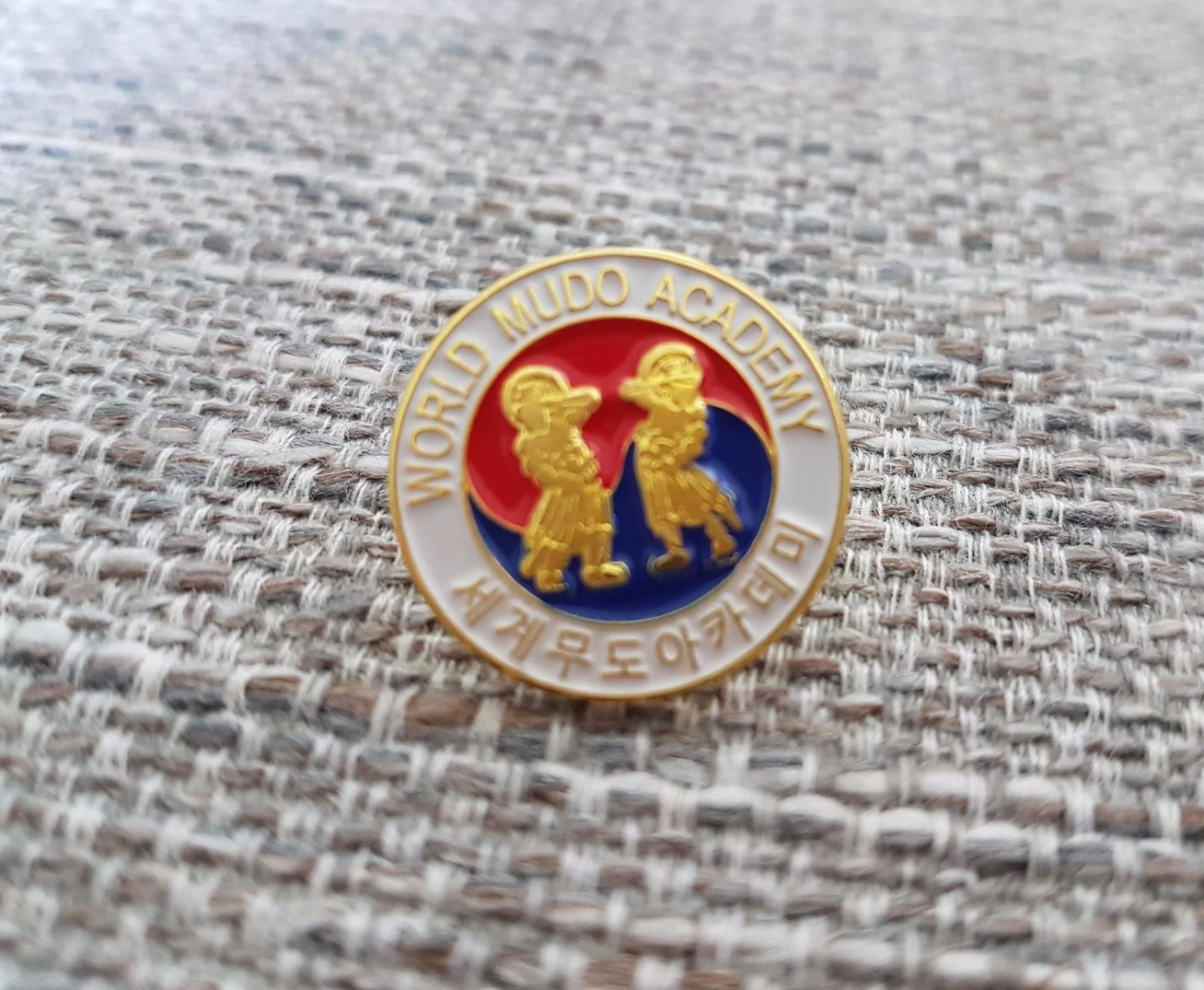 Mudo Academy Metal Pin Badge