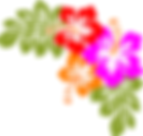 PHOTO FLOWERS 2.png