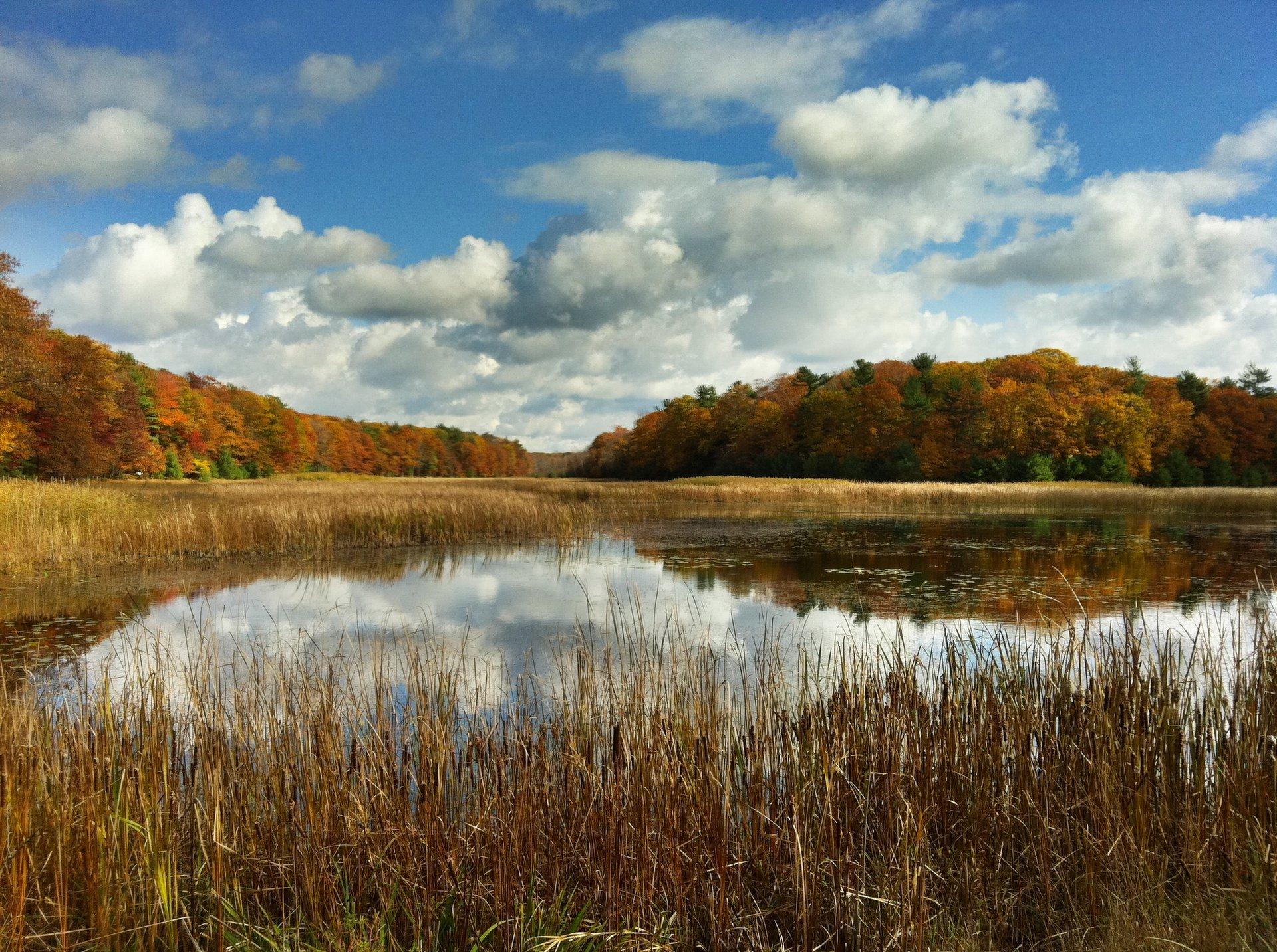 Beautiful Fall Sky Muskrat Lake