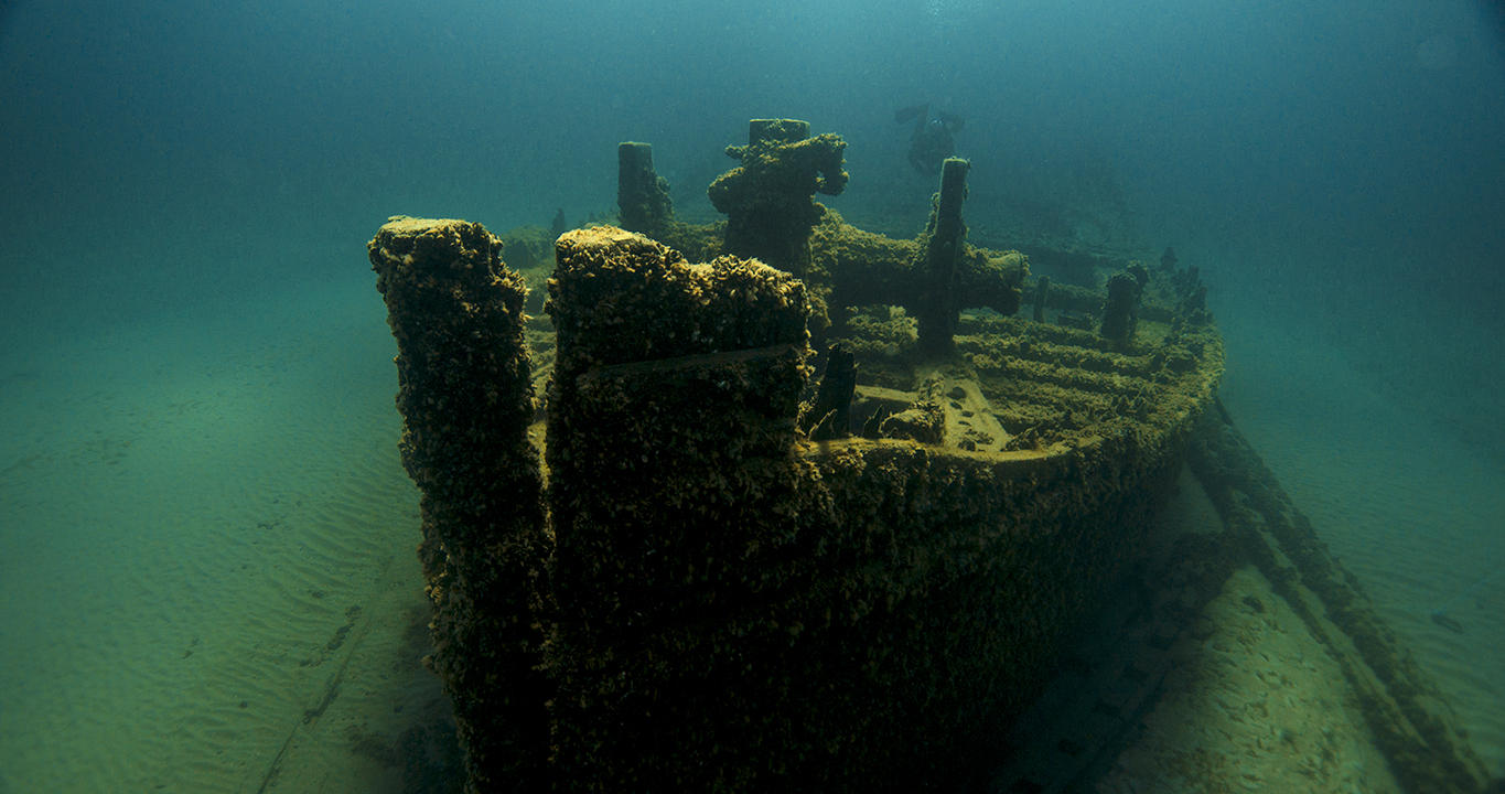 Wreck of the D.M. Wilson Thunder Bay