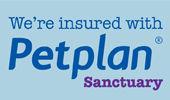 Doodles Bracknell - Business Insurance