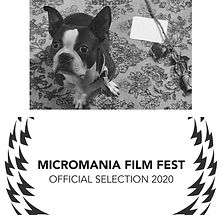 Micromania Film Festival Selection