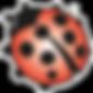 transparant_MOED_logo.png