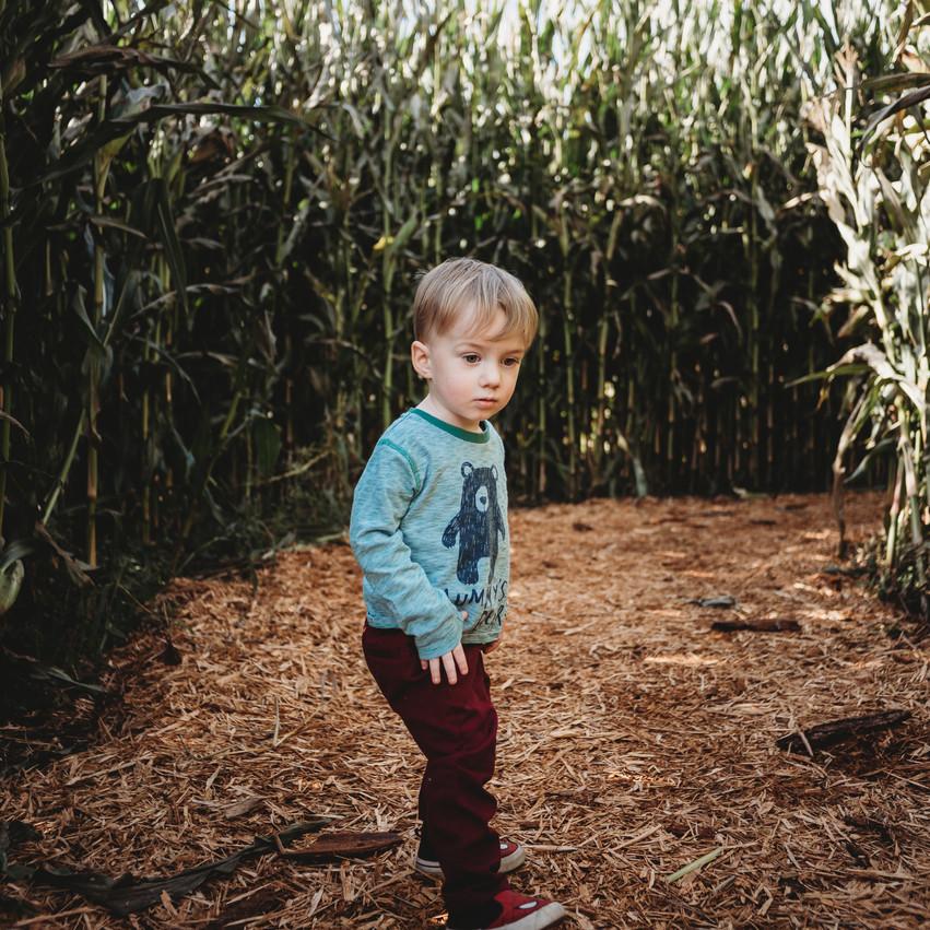 Boy in cornfield