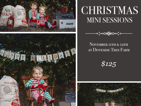 Announcing Christmas Mini Sessions!