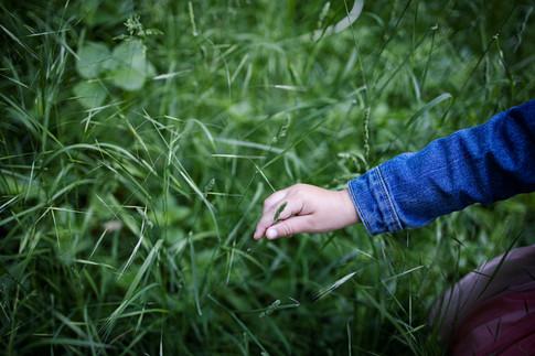 Тревата мечта е за детска ръчица