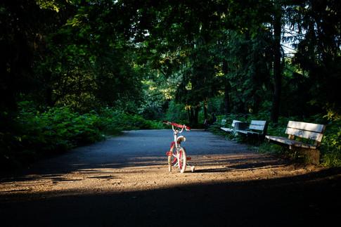 Вълшебният велосипед