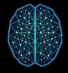 cerebro ilu (1).png