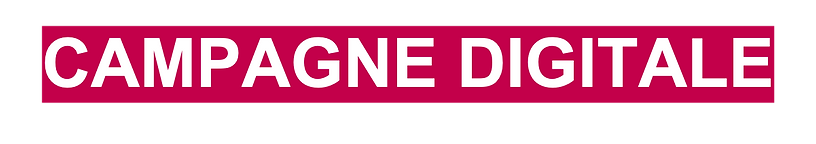 campagne digital.png