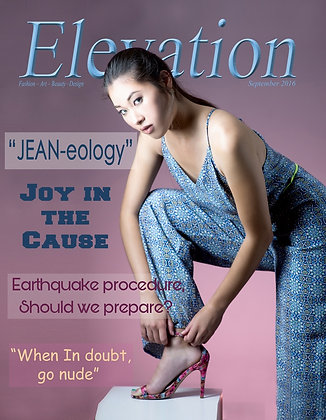 Elevation Issue # 10