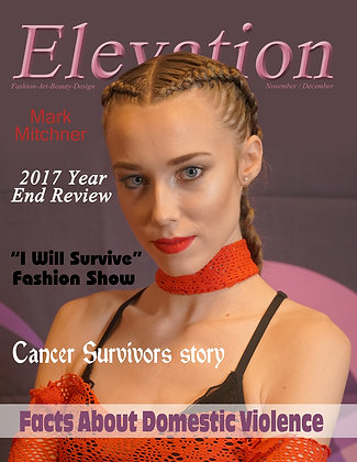 Elevation Issue # 17