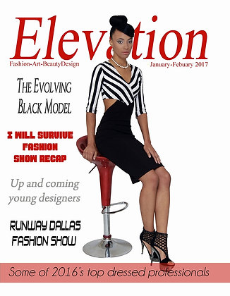 Elevation Issue # 12