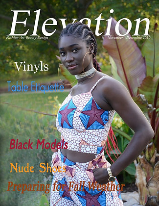 Elevation Issue # 28