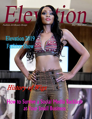 Elevation Issue # 26