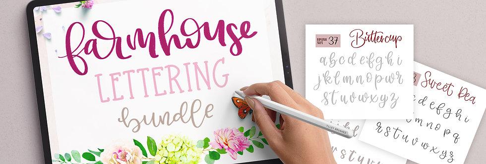 Farmhouse Modern Lettering   5 Worksheets, 6 Procreate Lettering Brushes