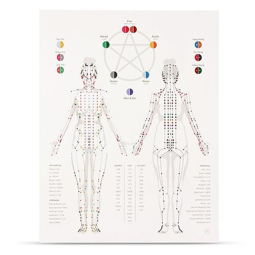 Meridian Chart